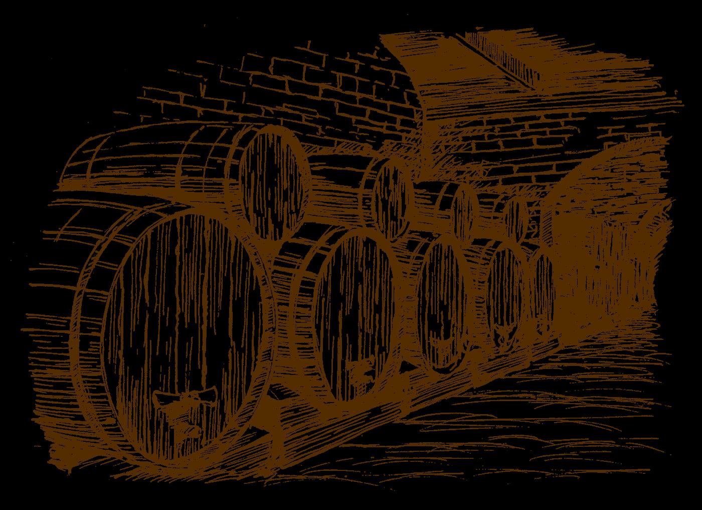 Browar Kormoran leżakowanie