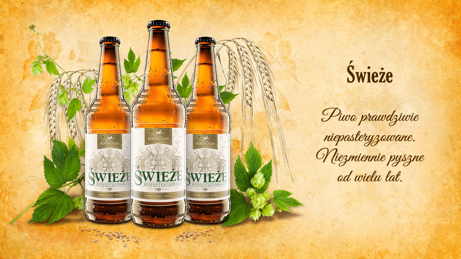 Piwo Świeże - Browar Kormoran