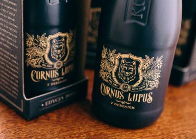 cornus-lupus-fot09