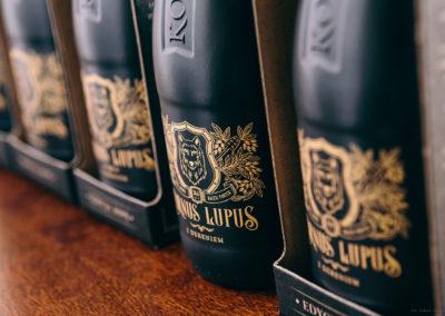 cornus-lupus-fot12