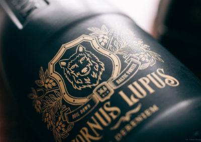 cornus-lupus-fot15